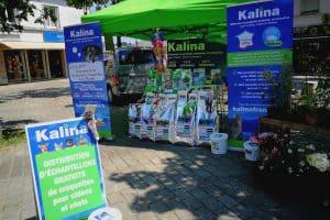 Kalina-Breizh