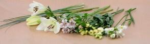 carrement fleurs – 5 – 31oct2019
