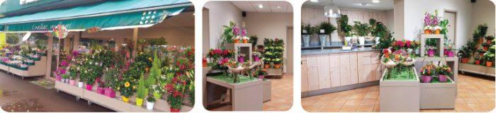 le jardin des fleurs – 1 – 10mai2019