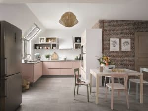 schmidt – CLA_COLOR PETALE DE ROSE 1 HD